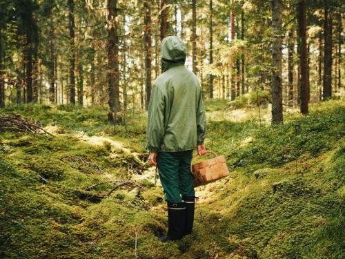 Olli Aarni, metsä, vihreä takki, kumisaappaat ja kori